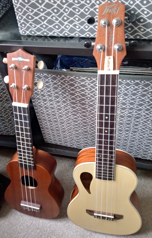 Soprano and concert ukuleles