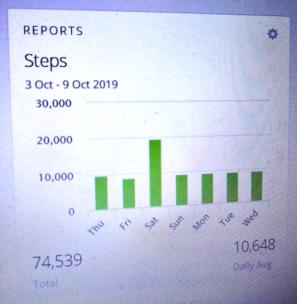 Garmin step graph