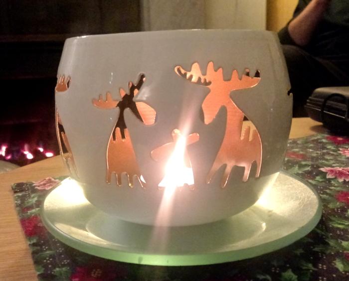 Moose or reindeer?