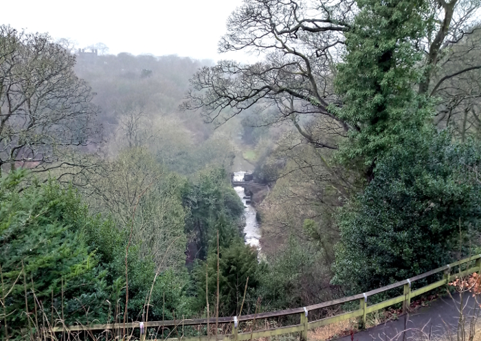 Jesmond Dene in the winter