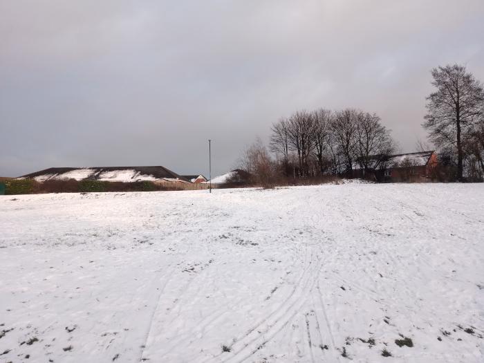 Snow, February 2021